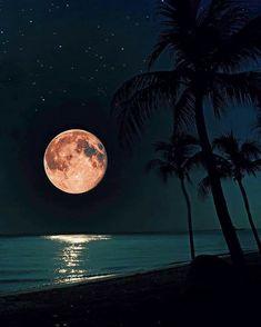 The Moon Is Beautiful, Beautiful Sunset, Beautiful Scenery, Beautiful Landscapes, Beautiful Places, Moon Photography, Amazing Photography, Sunset Photos, Nature Photos