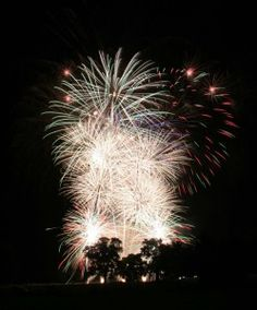 Stunning Reaction Fireworks