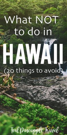 You've probably spent days searching for what to do in Hawaii but what about what NOT to do in Hawaii? This post covers 20 things you should never do in Hawaii. Make sure to read it before you go on your Hawaii vacation! Hawaii Vacation Tips, Hawaii Travel Guide, Hawaii Honeymoon, Vacation Trips, Travel Tips, Hawaii Hawaii, Vacation Travel, Hawaii Life, Vacation Ideas