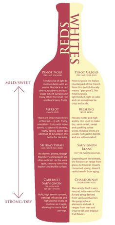 Brandy and Wine. Check Out These Great Wine Tips Today. Sangria or Pinot Noir, white or red, dry or sweet, wine is an exceptional drink. Do you wish to know more about wine? Keep reading to find out all about wi Fun Drinks, Yummy Drinks, Alcoholic Drinks, Beverages, Wine Chart, Wine Guide, In Vino Veritas, Wine Cheese, Wine Recipes