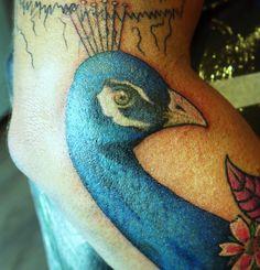 Peacock tattoo 1st sit