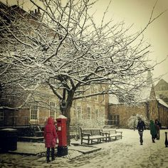 Palace Green in the snow, Durham, UK