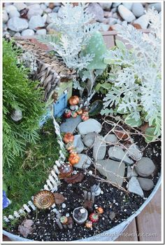 Make a Fall Fairy Garden with Finding Home