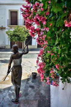Córdoba Spain, Granada, World, Places, Beautiful, Flower, Cordoba Spain, Monuments, Sevilla