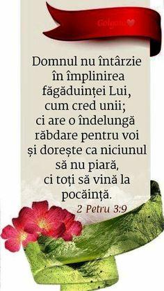 Spirituality, Herbs, God, Dios, Spiritual, Herb, Praise God, Spice, The Lord