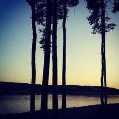 Instagram photo by jardabrousil - #jezero #Lhota #pláž #lake #beach #les #forest #sunset #tree #nature #skyline #summer #relaxation #instadaily #instagood #Czech #Republic