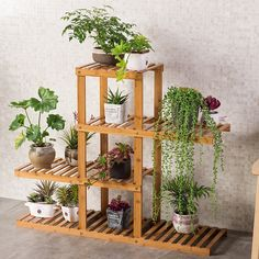 69.99$ Buy here - http://ali3b0.worldwells.pw/go.php?t=32720750392 - Multi layers Solid Wood Simple Flowerpot Rack In Living Room 69.99$