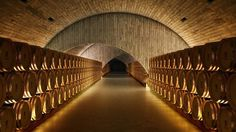 Quinta Do Vallado Winery / Francisco Vieira de Campos - Buscar con Google