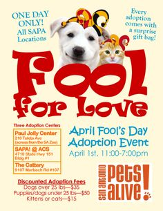 Fool for love adoption event!