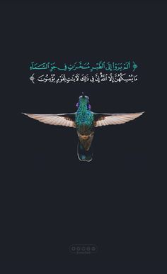 Do they not see the birds controlled in the atmosphere of the sky? None holds them up except Allah . Indeed in that are signs for a people who believe.سورة النحل‎, v. Beautiful Islamic Quotes, Islamic Inspirational Quotes, Arabic Quotes, Allah Quotes, Muslim Quotes, Qoutes, Quran Wallpaper, Islamic Quotes Wallpaper, Quran Arabic