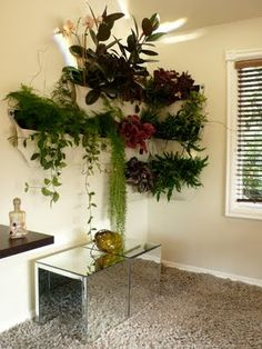 plant sacs. shelves. I'm not sure I like how it works in this room, but could be really cute in the right space.