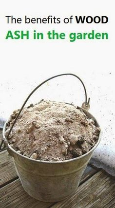 The benefits of WOOD ASH in the garden #Ideas - 101 Gardening