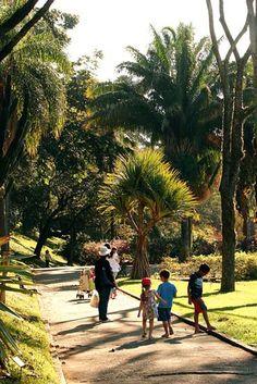 Jardim Botânico, jardim dos sentidos