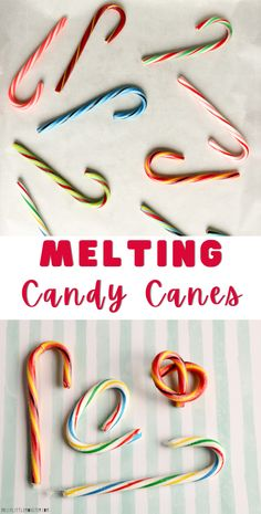 Melting candy cane experiment. Easy Christmas science experiment for kids.