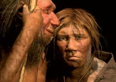 {Neanderthals ... They're Just Like Us?}