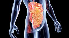Five Foods That Work Miracles on Digestive Problems