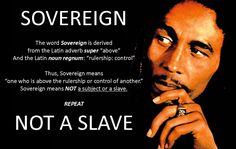 Anna Von Reitz released the Top 12 Steps to Reclaim Your Estate – Birthright Citizenship vs Corporate Slave Citizenship in April of She has released other alternatives to yet the 12 Steps ar… 2pac, Marley Family, Definition Quotes, Self Reliance, Sensitive People, Birth Certificate, Citizenship, Never Forget, Atheist