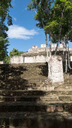 Into the Jungle of Yucatan // Calakmul gehört zu den impossantesten Maya Stätten in Mexiko mitten im Dschungel  - ein unvergessliches Erlebnis #travelwithweibi Yucatan