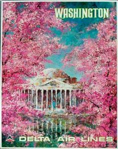 Delta Airlines Original Vintage Travel Poster Washington DC