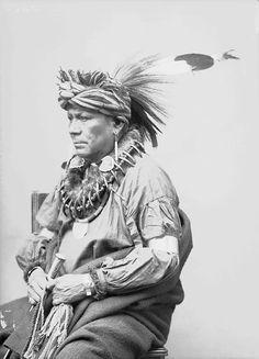 Cherokee (Tsalagihi Ayili)Tribe ~ Oklahoma, North Carolina & Tennessee     The above two images arecourtesy of: http://musiclas...