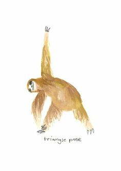 Sloth yoga | pinterest: @Blancazh