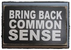 "Bring Back Common Sense Wood Sign; wall art, humorous, political; vinyl; 8"" x 10"";color choices"