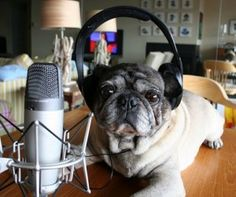 10 Awesome French Podcasts For French Learners