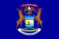 The State Of Michigan Flag.