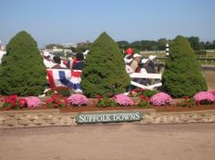 T.D. Thornton's Not by a Longshot: A Season at a Hard-Luck Horse Track depicts Suffolk Downs as a gritty, marginal track struggling to survive, with a few moments of redemption and glory to keep pe…