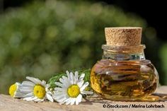 German chamomile oil offers potent anti-inflammatory properties, which effectively works for various skin disorders. http://articles.mercola.com/herbal-oils/german-chamomile-oil.aspx