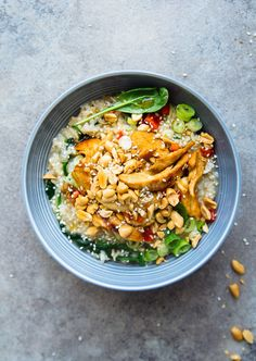 Brown Rice Indonesian Chicken Porridge