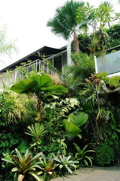Awards - tropic planners & landscape pte ltd tropical tropical garden, backyard