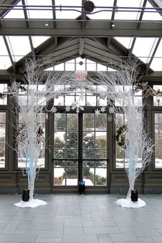 White birch branch archway with snowflakes and uplighting