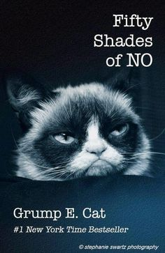 Exactly, Grumpy Cat. Fifty Shades of NO. The Inklings of Life: Fifty Shades of... Give Me a Break