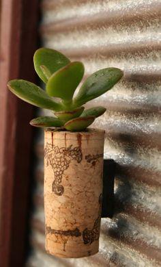 Succulent cork magnet. <3