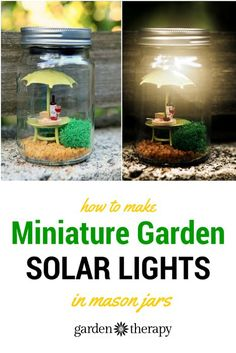 These mini garden mason jar solar lights are so adorable. I love the little wine a cheese set on the table. More ideas in this article. Mason Jar Solar Lights, Jar Lights, Bottle Lights, Mason Jar Garden, Bottle Garden, Pots, Solar Light Crafts, Pot Jardin, Mason Jar Crafts