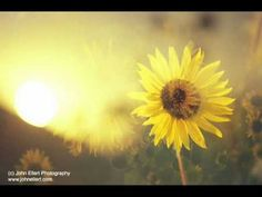 Jerry Vale - O Sole Mio - YouTube
