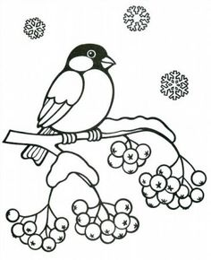 Community wall photos - My CMS Coloring Sheets For Kids, Coloring Pages For Kids, Coloring Books, Outline Drawings, Bird Drawings, Mosaic Patterns, Embroidery Patterns, Victorian Christmas Decorations, Kitten Drawing