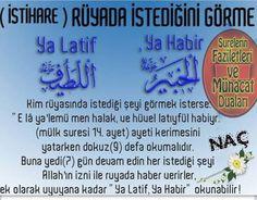 Islam, Aikido, Deen