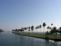 Kappil #Lake is an idyllic spot and enchanting #attraction to visit and #explore for the #travellers. The Lake is a best place for the fishing with boating. The sight of the majestic Arabian Sea and the lake merging together makes the most graceful view for the travellers. Moreover, the place also offers travellers to explore and experience the much acclaimed backwaters of #Kerala. #travel #enjoy