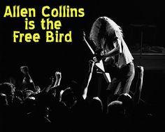 Allen Collins | Allen Collins Is The Free Bird Poster By Ben Upham Allen Collins, Ronnie Van Zant, Best Guitarist, Better Music, Bird Poster, Lynyrd Skynyrd, The World's Greatest, Rock Music, Cool Bands