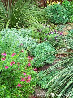 190 Best Texas Gardening Ideas Texas Gardening Plants Texas