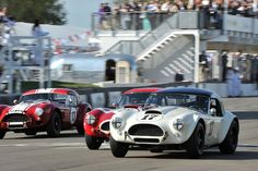 AC Cobra Race - Shelby Cup at Goodwood Revival 2012