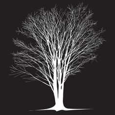 The abstract of large bare tree without leaves - hand drawn | Vector | Colourbox on Colourbox