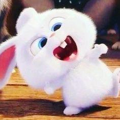 Cute Bunny Cartoon, Cute Cartoon Pictures, Wallpaper Iphone Disney, Cute Disney Wallpaper, Snowball Rabbit, Hd Cute Wallpapers, Cute Cartoon Characters, Disney Princess Pictures, Cute Piggies