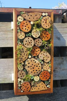 Eco Garden, Natural Garden, Garden Art, Amazing Gardens, Beautiful Gardens, Cactus Plante, Bug Hotel, Mason Bees, Garden Insects