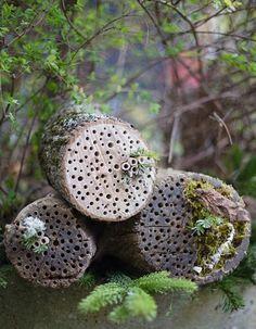 DIY-Anleitung: Insektenhotel aus einem Baumstamm selber bauen via DaWanda.com