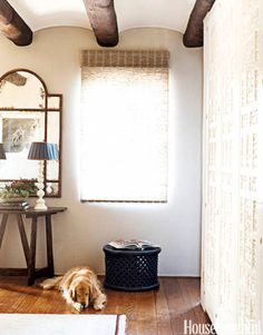 Polo the golden retriever naps in the warm-colored TV room of a  California home by designer Christina Rottman.   - HouseBeautiful.com
