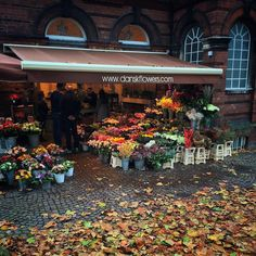 Flowers and autumn leaves this afternoon by jepalmer100