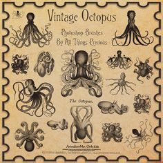 Vintage Octopus Brushes by ~AllThingsPrecious on deviantART